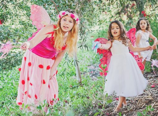 Fairy Garden Party Perth Parties Kids Remember